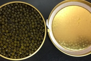 roya-imperial-black-caviar
